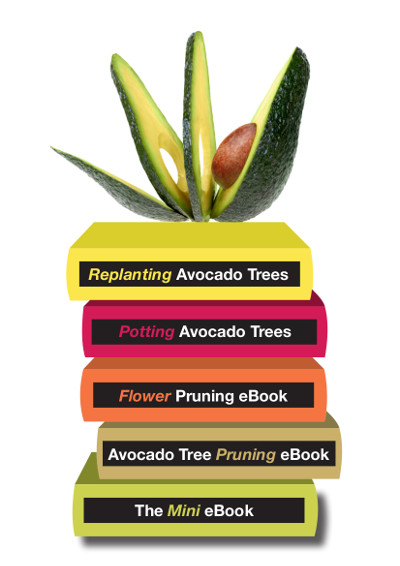 avopro avocado mini library